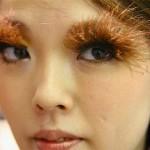 False eyelashes, as they apply